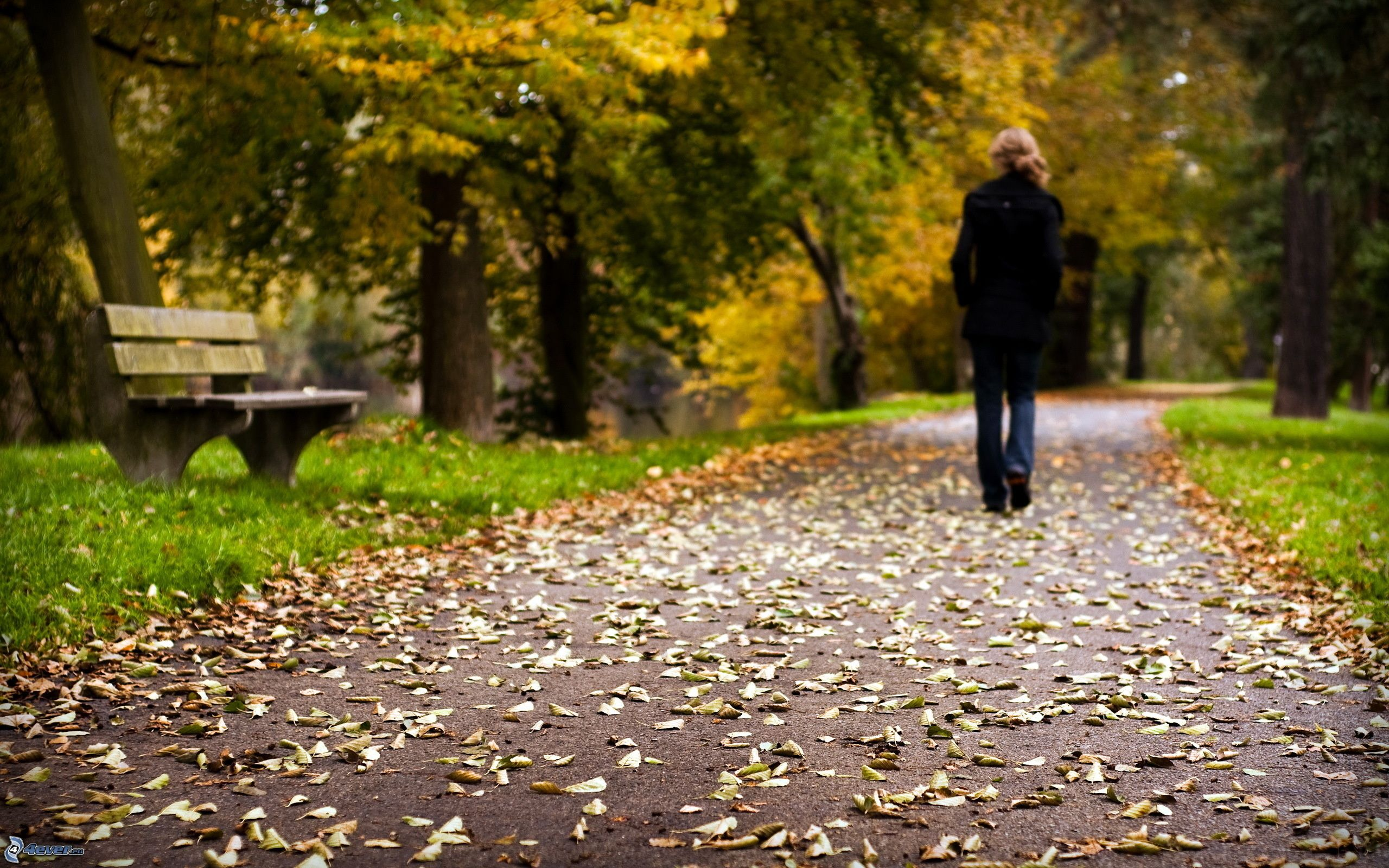 Фото девушек в парке на скамейке 24 фотография